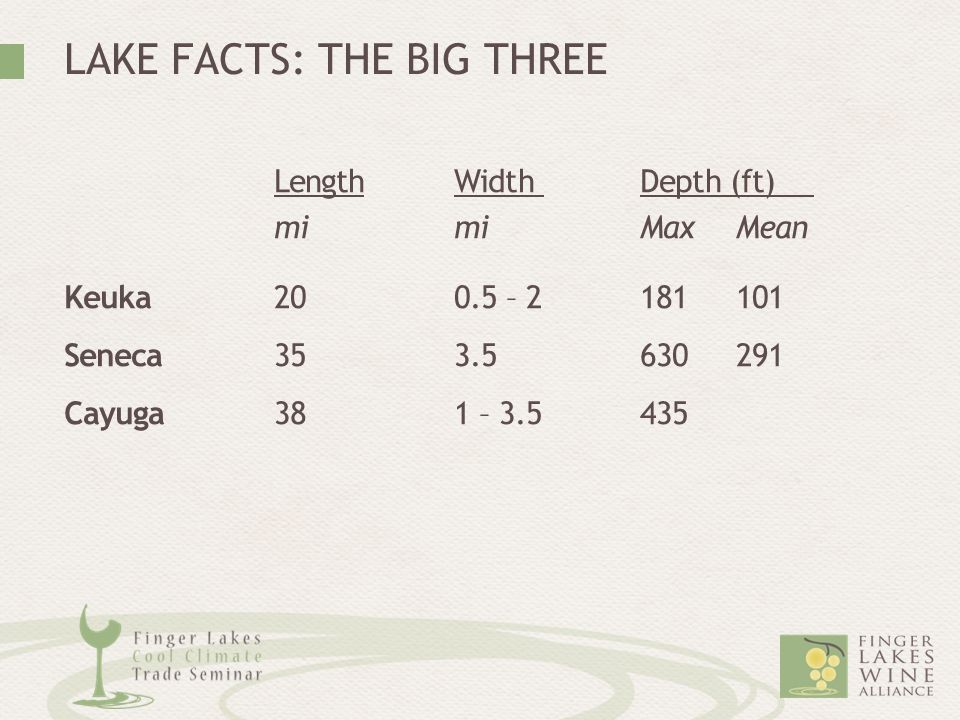 LAKE FACTS: THE BIG THREE LengthWidthDepth (ft) mimiMax Mean Keuka200.5 – 2181 101 Seneca353.5630 291 Cayuga381 – 3.5435