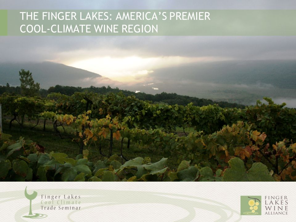 THE FINGER LAKES: AMERICA'S PREMIER COOL-CLIMATE WINE REGION