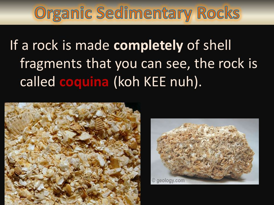If a rock is made completely of shell fragments that you can see, the rock is called coquina (koh KEE nuh).