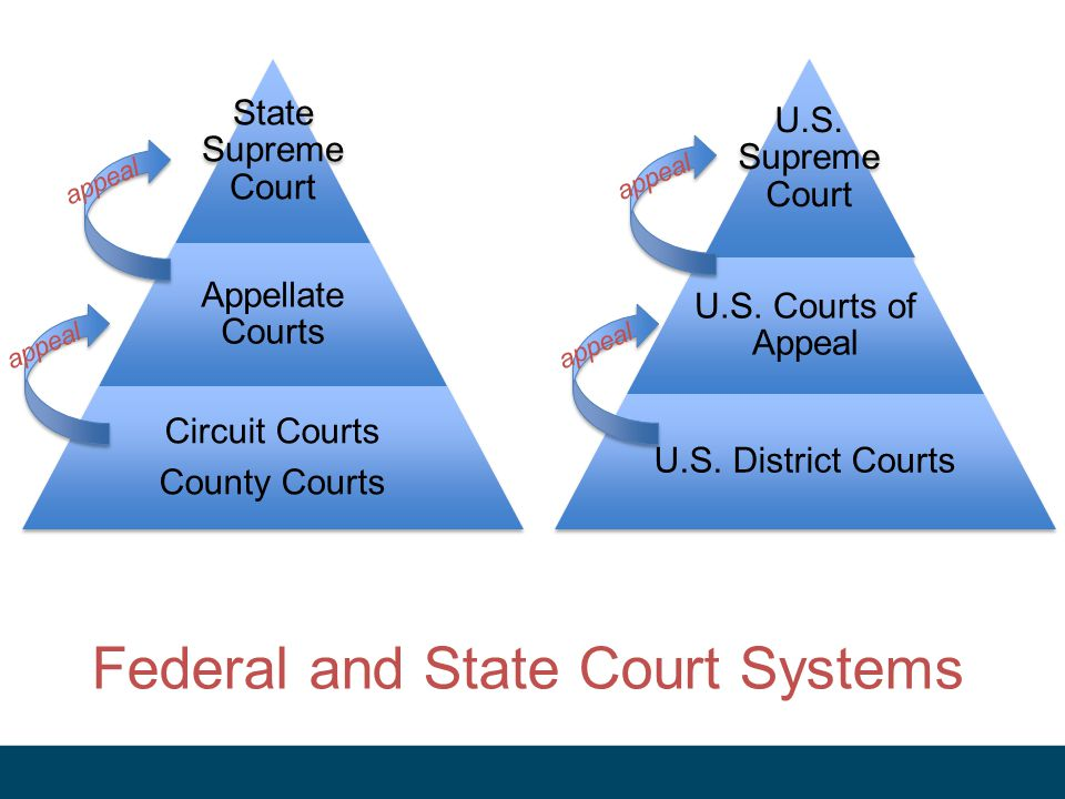 Federal and State Court Systems State Supreme Court Appellate Courts Circuit Courts County Courts U.S.
