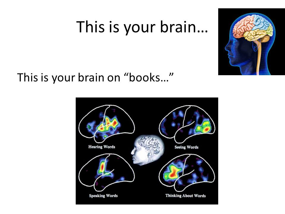 This is your brain… This is your brain on books…