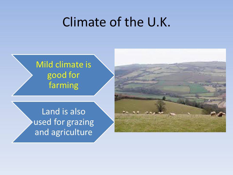 Mild climate is good for farming Land is also used for grazing and agriculture