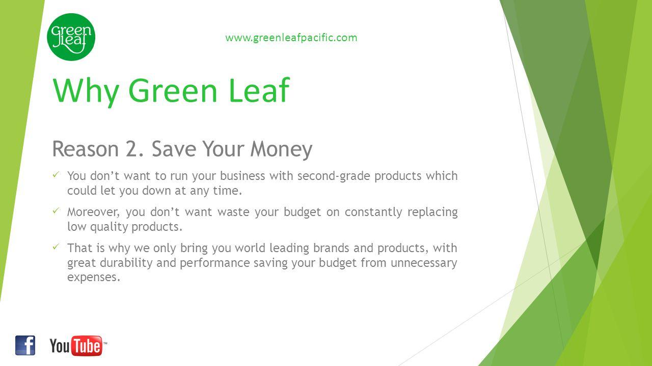 Green Leaf Reason 3.