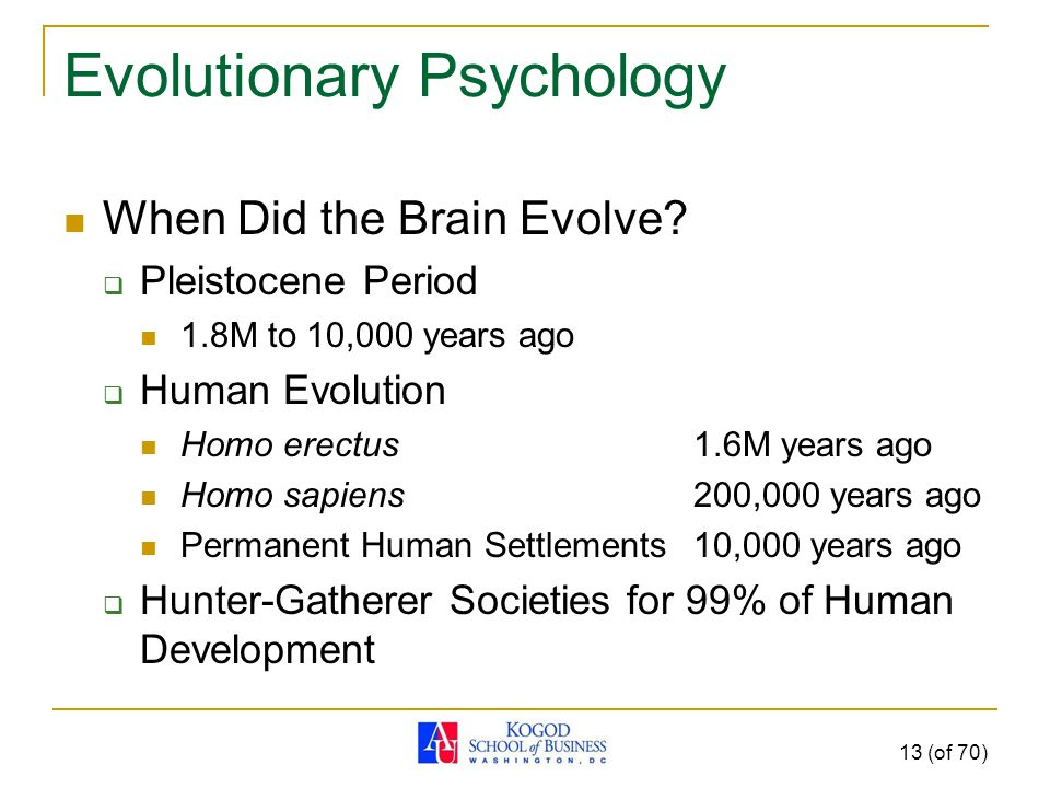 Evolutionary Psychology When Did the Brain Evolve.