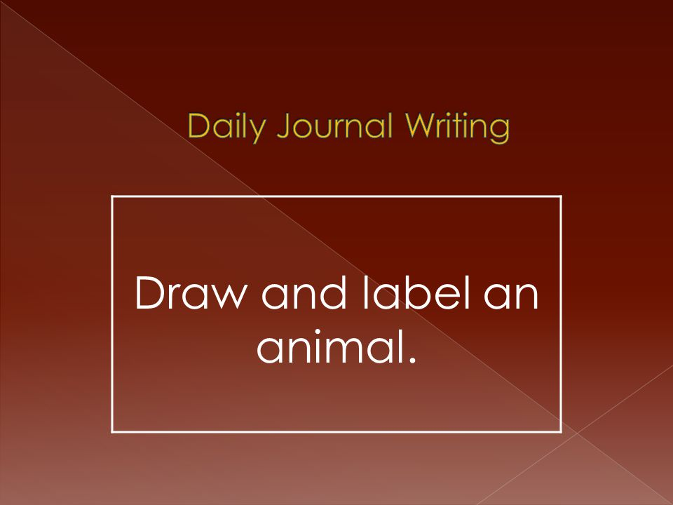 Draw and label an animal.
