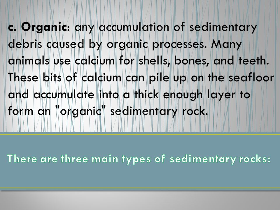 c. Organic: any accumulation of sedimentary debris caused by organic processes.