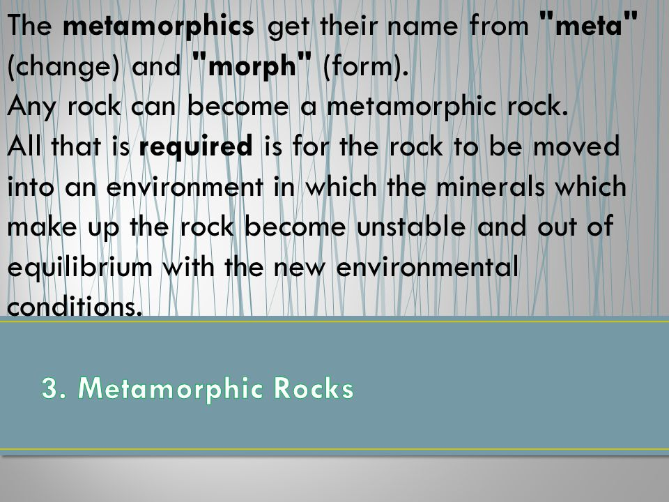 The metamorphics get their name from meta (change) and morph (form).