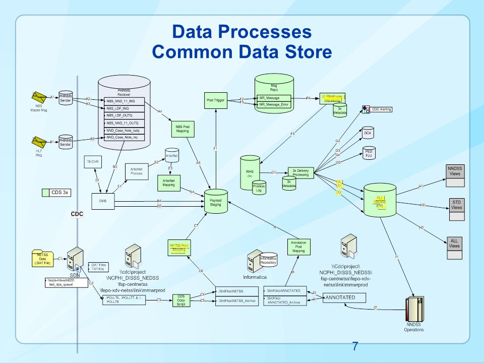 Data Processes Common Data Store 7