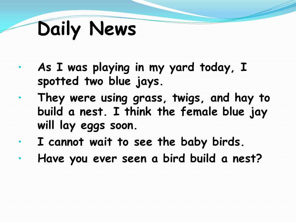 Daily News As I was playing in my yard today, I spotted two blue jays.