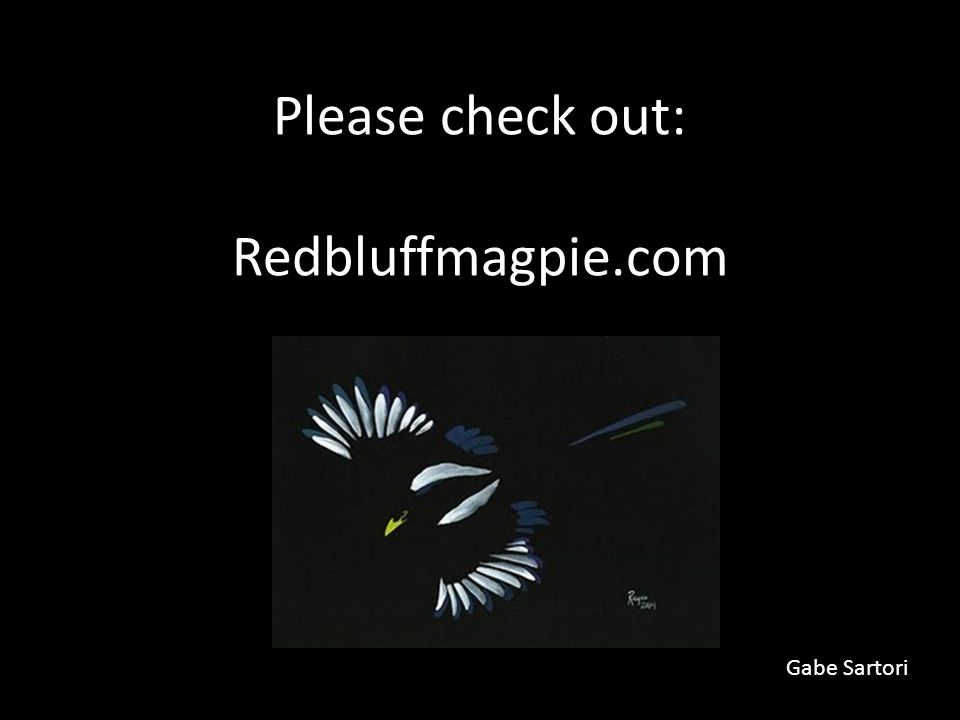 Please check out: Redbluffmagpie.com Gabe Sartori