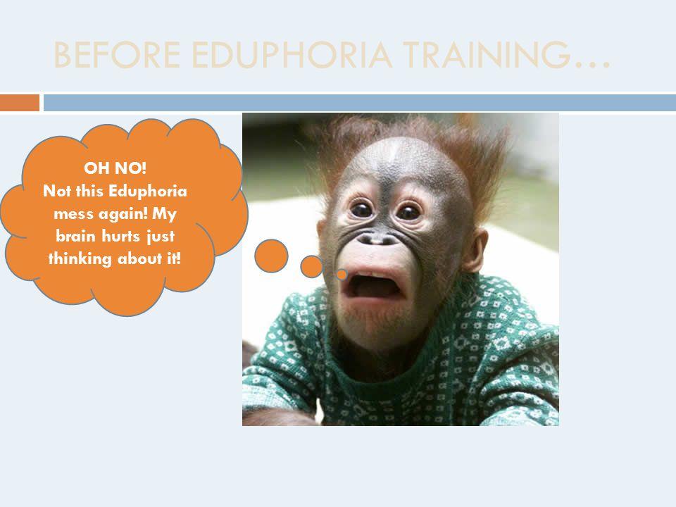 BEFORE EDUPHORIA TRAINING… OH NO. Not this Eduphoria mess again.