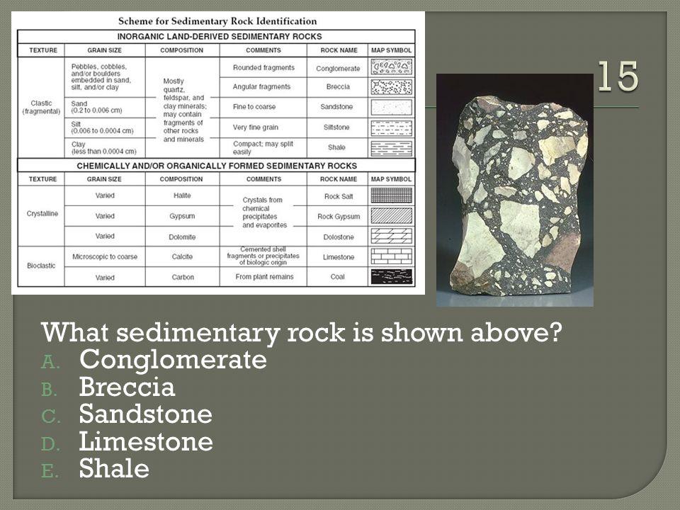 What sedimentary rock is shown above? A. Conglomerate B. Breccia C. Sandstone D. Limestone E. Shale