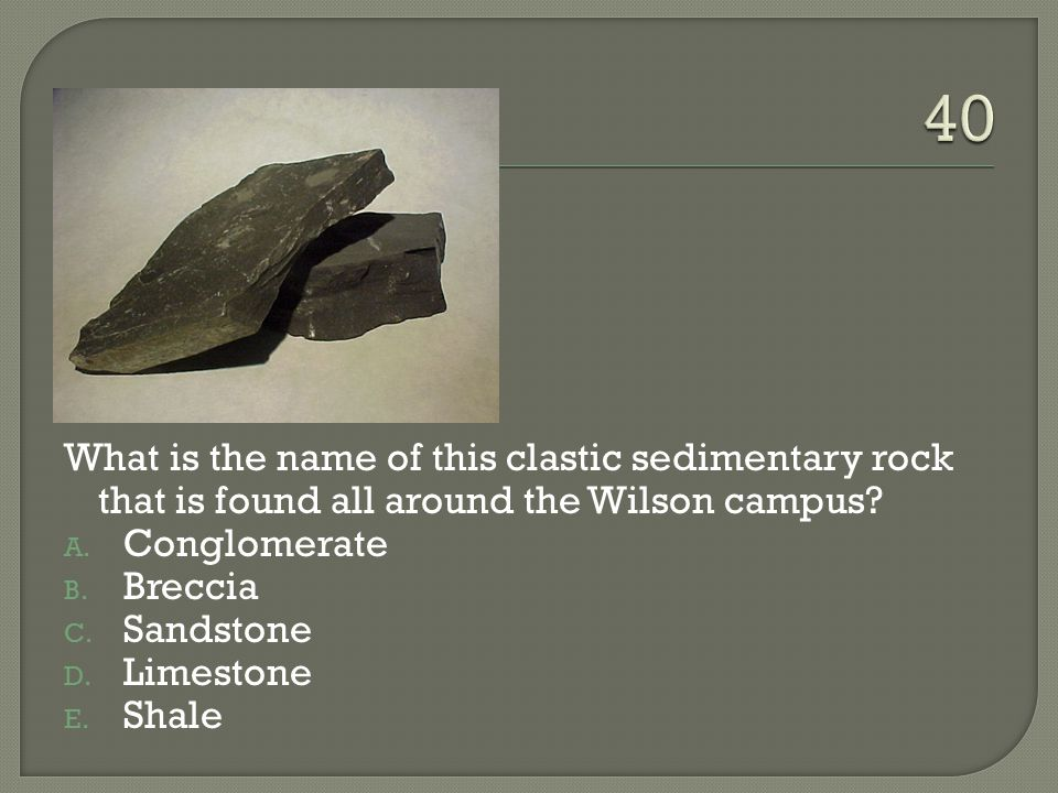 What is the name of this clastic sedimentary rock that is found all around the Wilson campus.