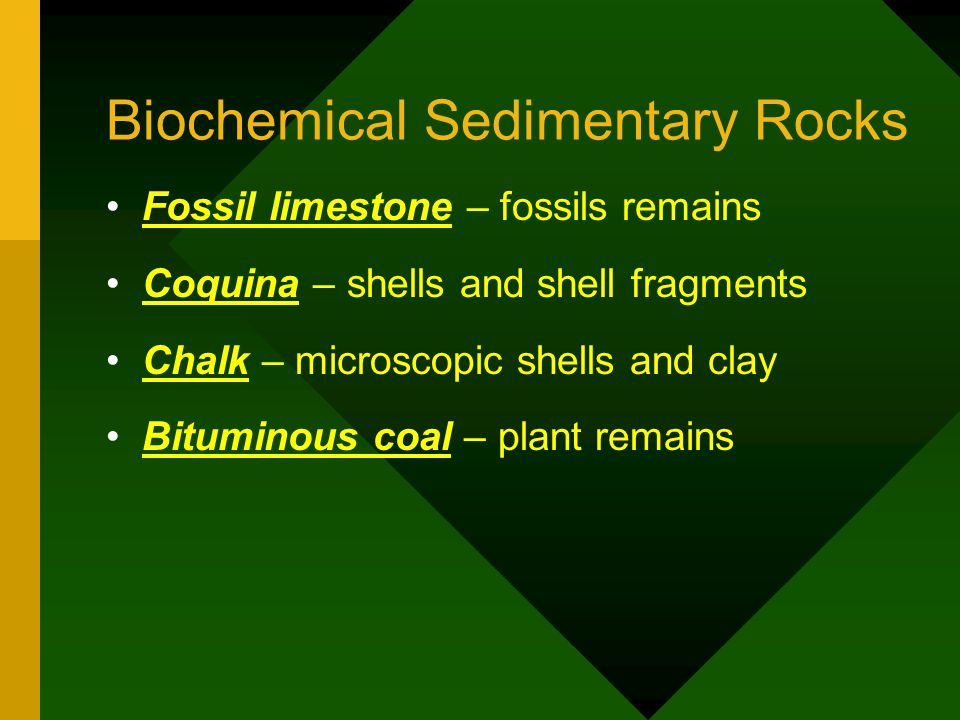 Biochemical Sedimentary Rocks Fossil limestone – fossils remains Coquina – shells and shell fragments Chalk – microscopic shells and clay Bituminous c