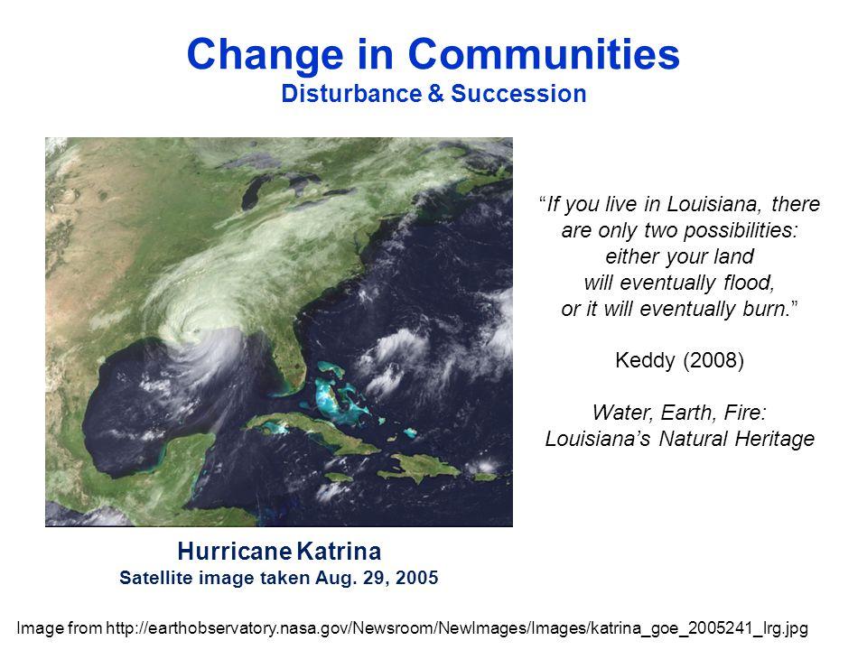 Hurricane Katrina Satellite image taken Aug.