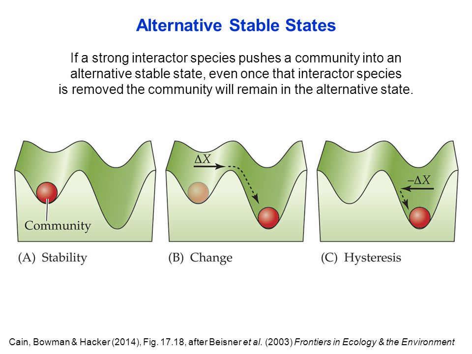 Alternative Stable States If a strong interactor species pushes a community into an alternative stable state, even once that interactor species is removed the community will remain in the alternative state.