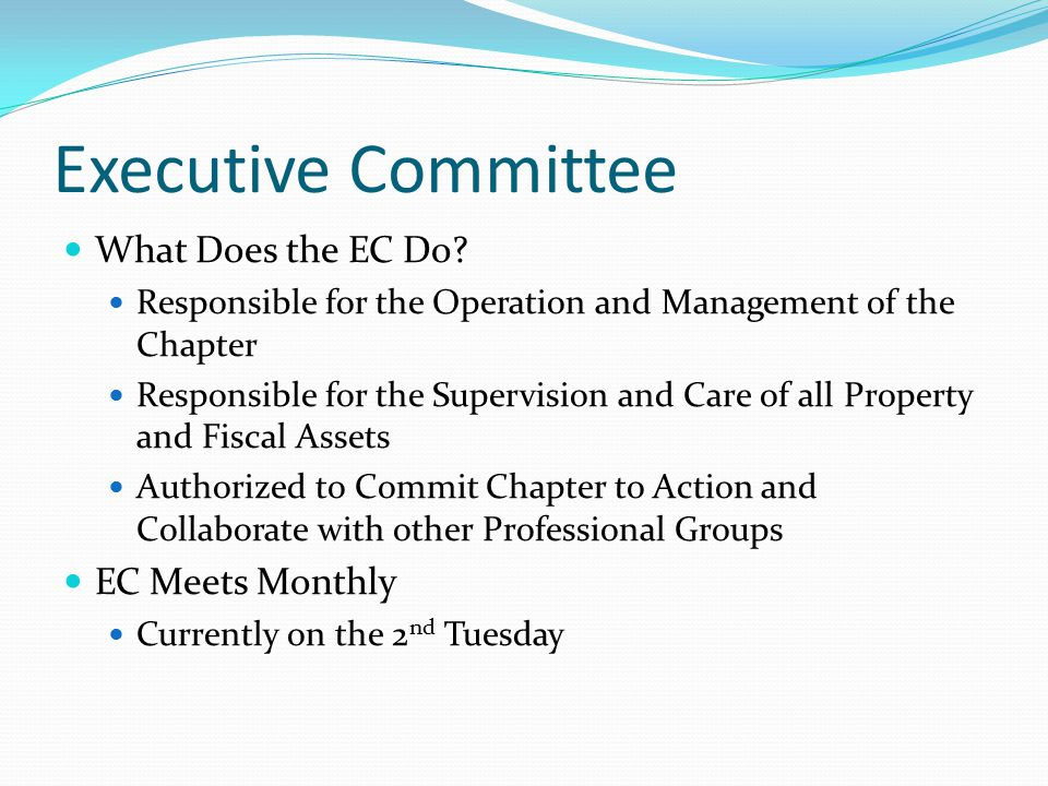Executive Committee What Does the EC Do.