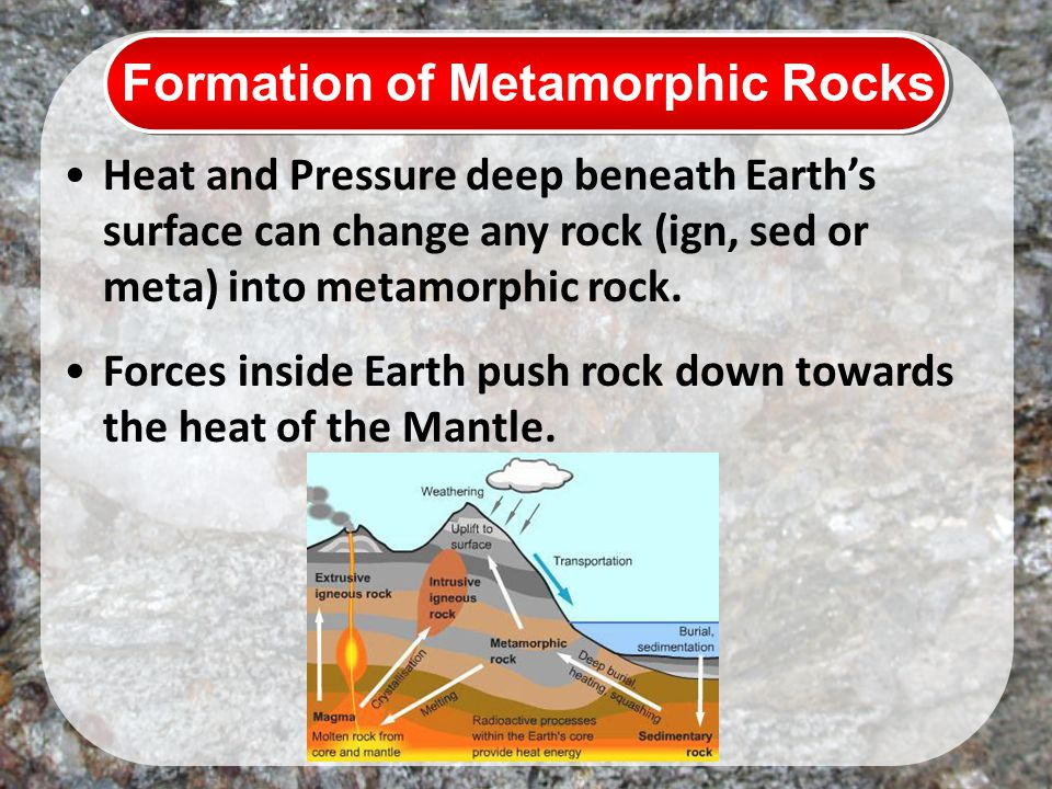 Formation of Metamorphic Rocks Heat and Pressure deep beneath Earth's surface can change any rock (ign, sed or meta) into metamorphic rock.