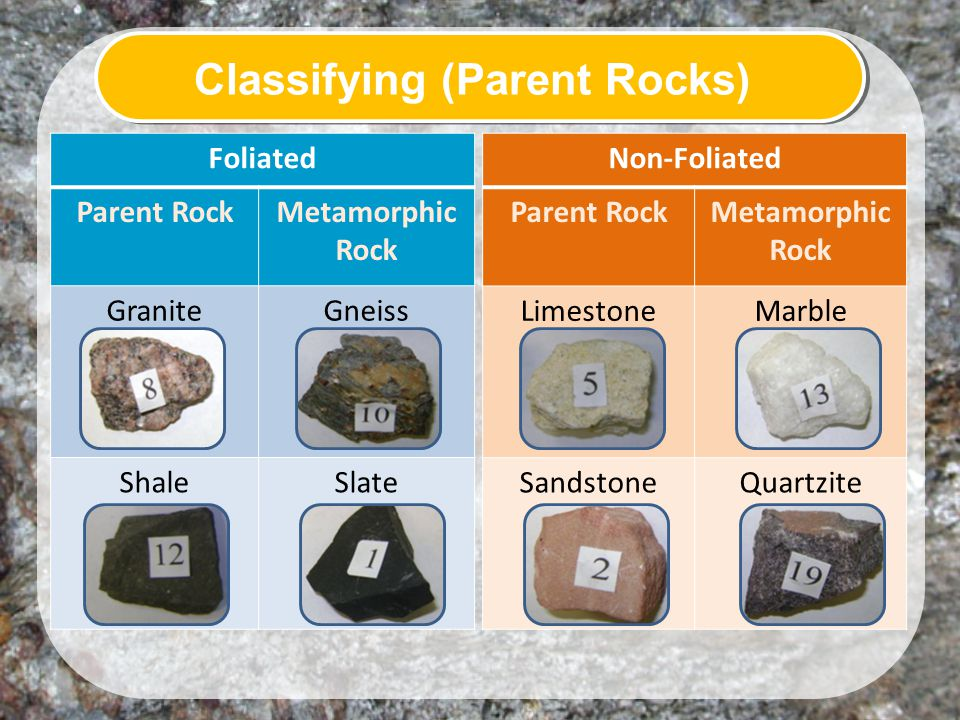 Foliated Parent RockMetamorphic Rock GraniteGneiss ShaleSlate Non-Foliated Parent RockMetamorphic Rock LimestoneMarble SandstoneQuartzite Classifying (Parent Rocks)