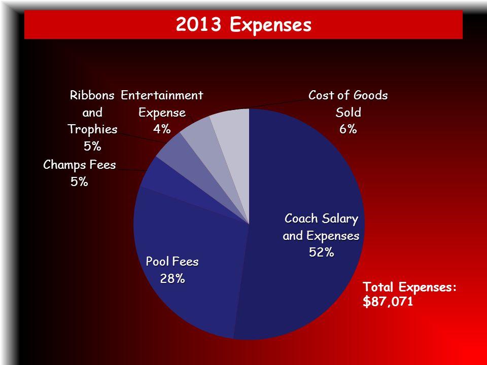 2013 Expenses