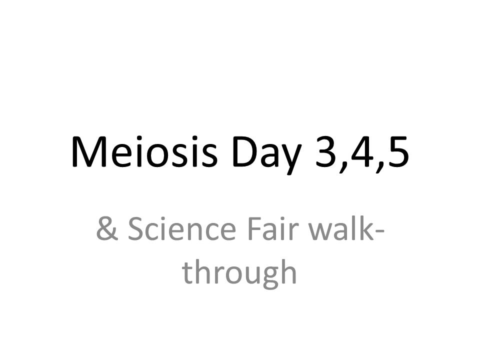 Meiosis Day 3,4,5 & Science Fair walk- through