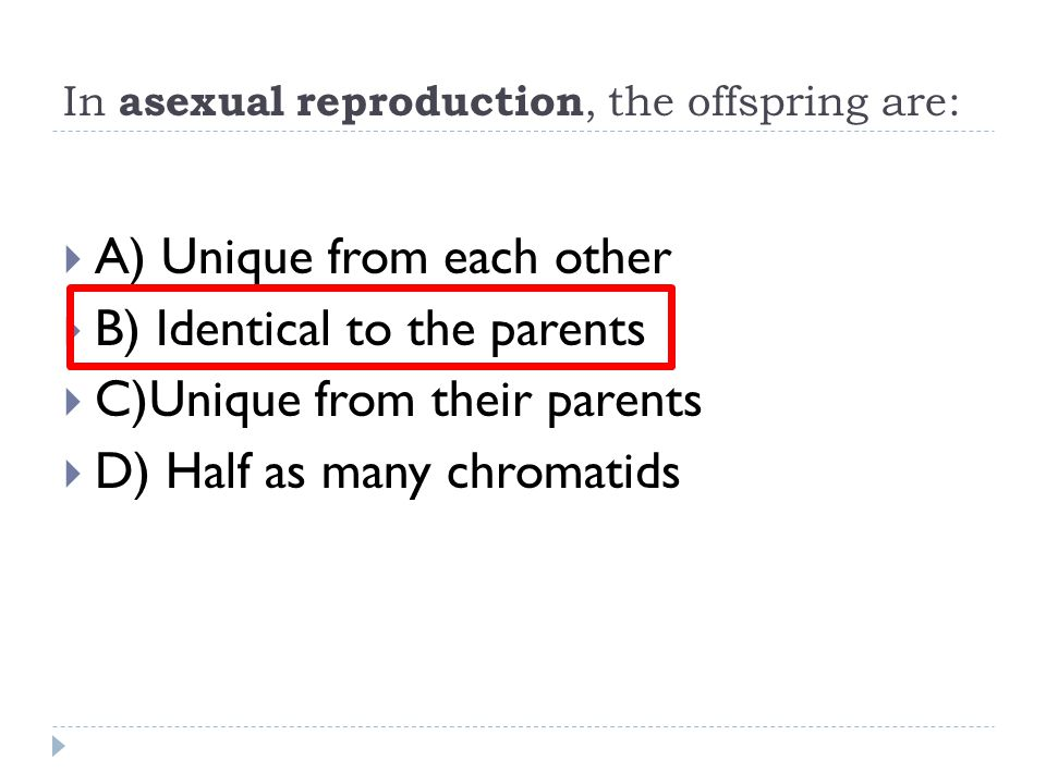 In asexual reproduction, the offspring are:  A) Unique from each other  B) Identical to the parents  C)Unique from their parents  D) Half as many