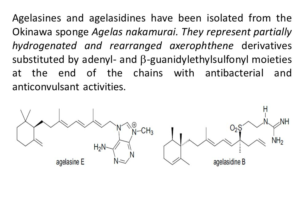 Agelasines and agelasidines have been isolated from the Okinawa sponge Agelas nakamurai. They represent partially hydrogenated and rearranged axeropht