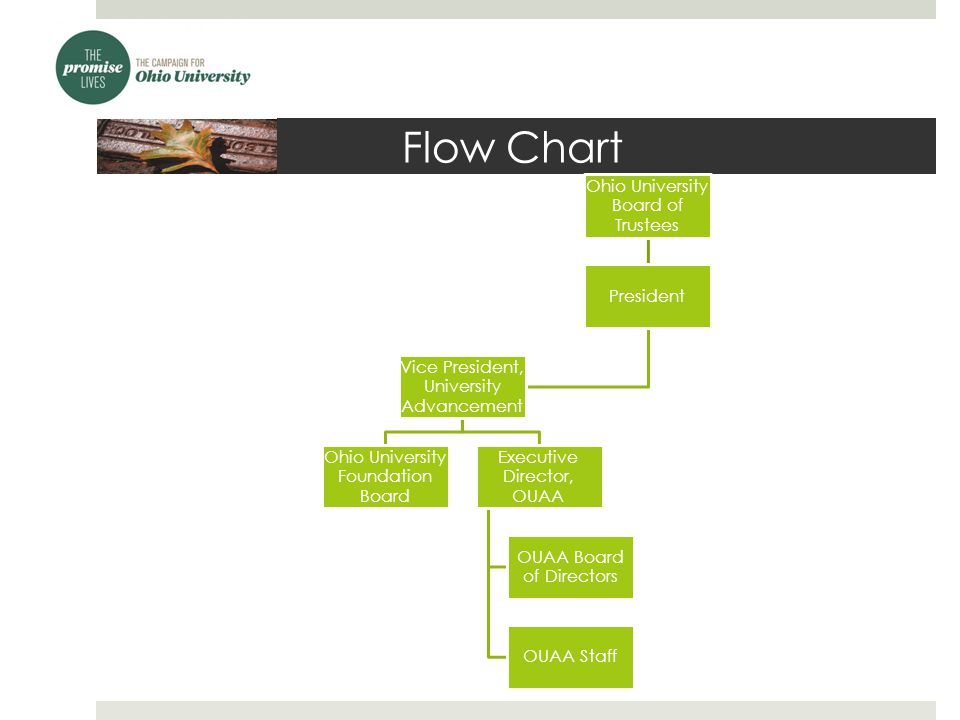 Flow Chart Ohio University Board of Trustees President Vice President, University Advancement Ohio University Foundation Board Executive Director, OUAA OUAA Board of Directors OUAA Staff