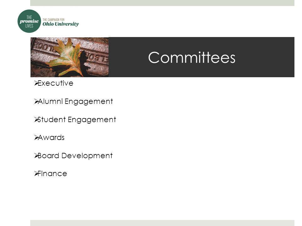 Committees - Executive  Comprised of each committee chair, immediate past chair, current chair and vice chair, and Executive Director  Oversees appointments of committee chairs  Guides Board's direction for the year