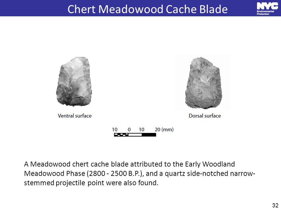 32 Chert Meadowood Cache Blade A Meadowood chert cache blade attributed to the Early Woodland Meadowood Phase (2800 - 2500 B.P.), and a quartz side-notched narrow- stemmed projectile point were also found.