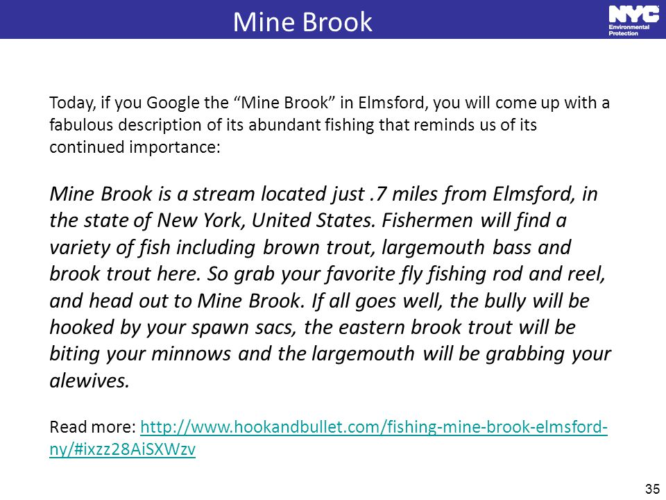35 Mine Brook Today, if you Google the Mine Brook in Elmsford, you will come up with a fabulous description of its abundant fishing that reminds us of its continued importance: Mine Brook is a stream located just.7 miles from Elmsford, in the state of New York, United States.
