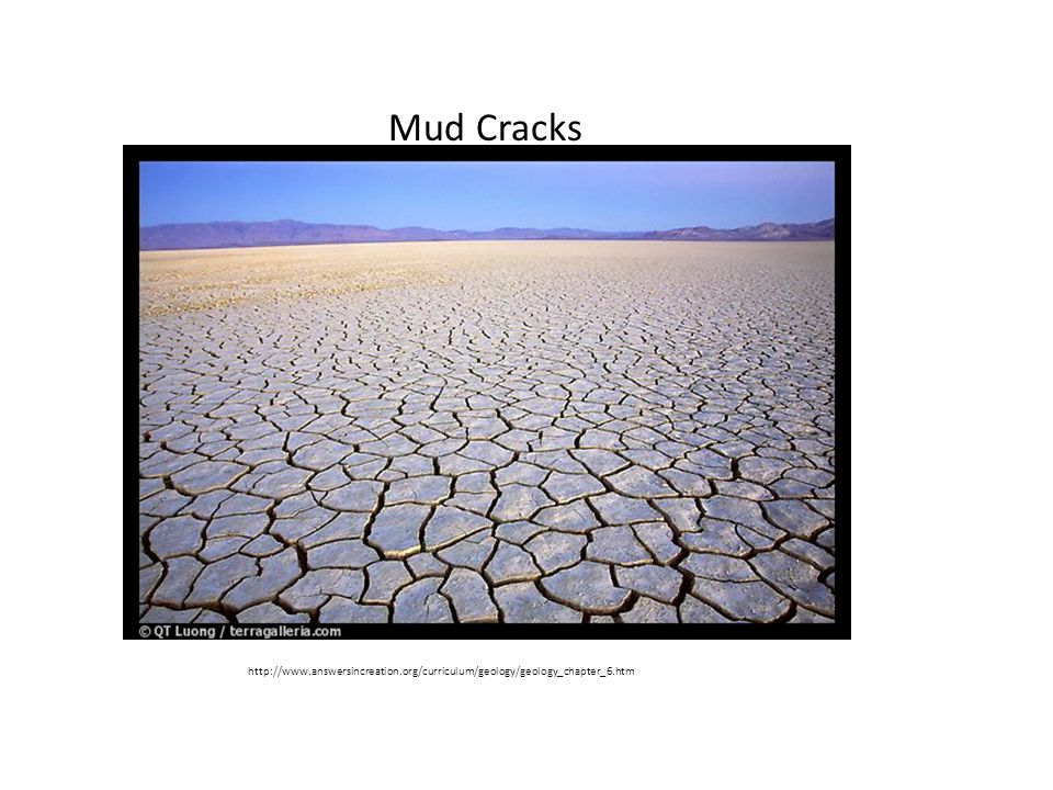 http://www.answersincreation.org/curriculum/geology/geology_chapter_6.htm Mud Cracks