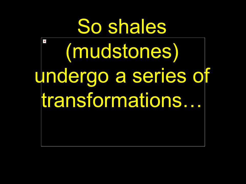 45 So shales (mudstones) undergo a series of transformations…