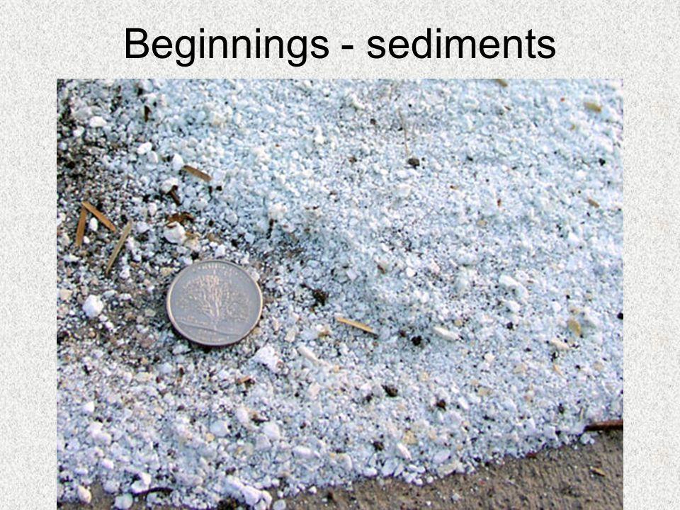 Beginnings - sediments