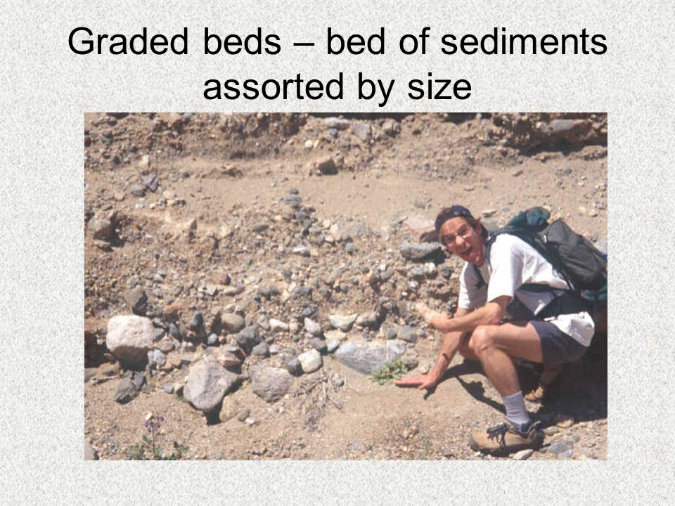 Graded beds – bed of sediments assorted by size
