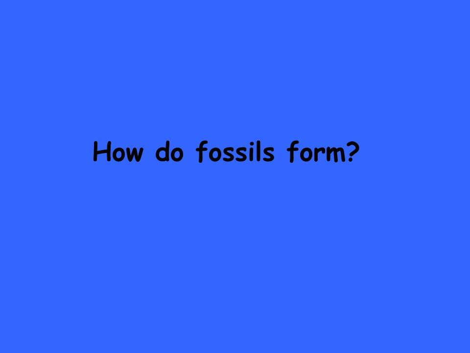 How do fossils form
