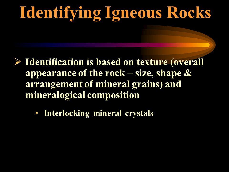 Common Igneous Rocks GraniteDiorite GabbroKimberlite Basalt Pumice Rhyolite Obsidian extrusiveextrusive http://volcanoes.usgs.gov intrusiveintrusive http://cwx.prenhall.com