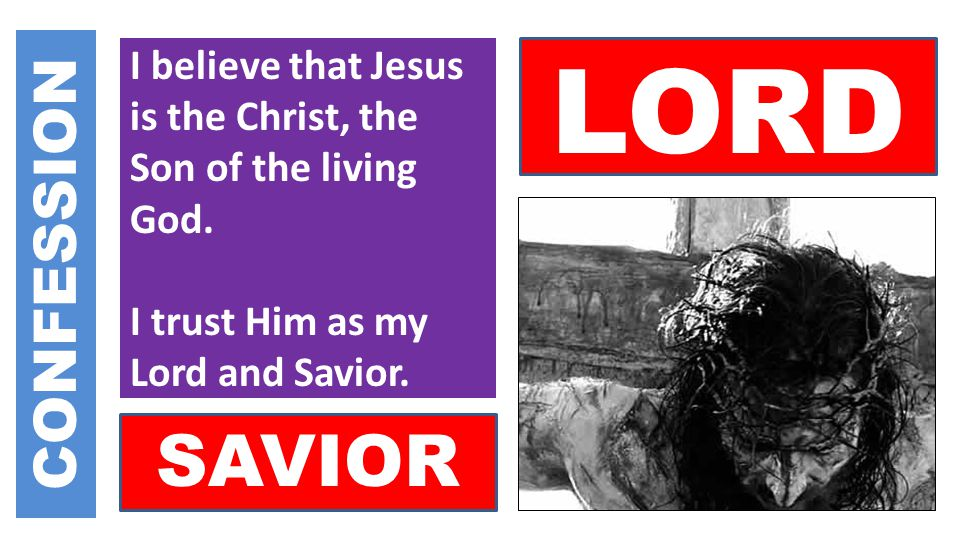 I believe that Jesus is the Christ, the Son of the living God.