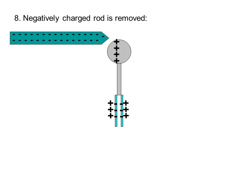 -------------- - - --------------- ++++++++ +- -+ 8. Negatively charged rod is removed: