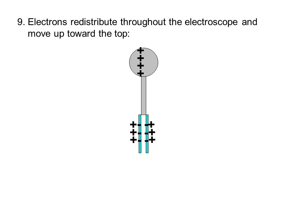 ++++++++ + +- + -+ 9. Electrons redistribute throughout the electroscope and move up toward the top: --