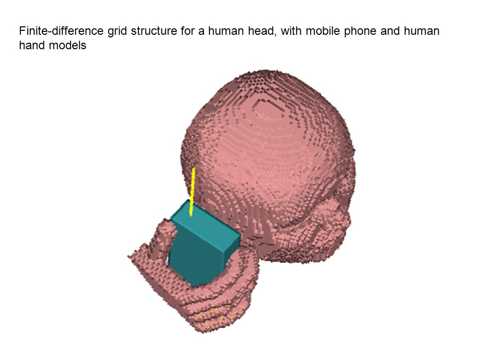 Finite-difference grid structure for a human head, with mobile phone and human hand models