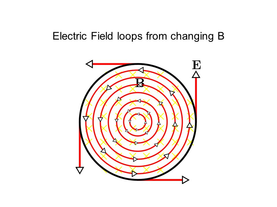 Electric Field loops from changing B