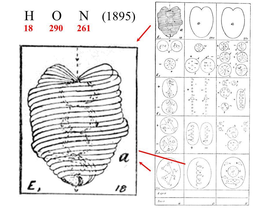 H O N (1895) 18 290 261