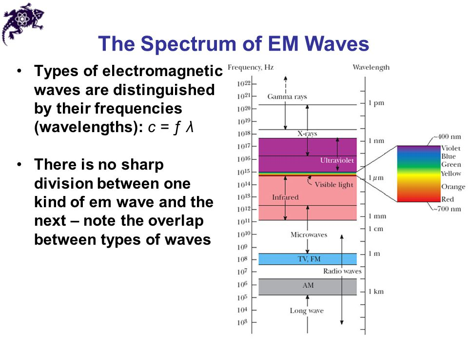 The Spectrum of EM Waves Types of electromagnetic waves are distinguished by their frequencies (wavelengths): c = ƒ λ There is no sharp division betwe