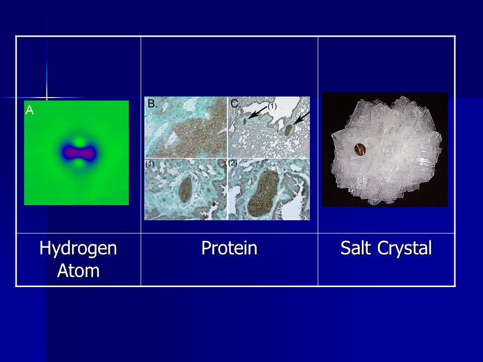 Hydrogen Atom Protein Salt Crystal