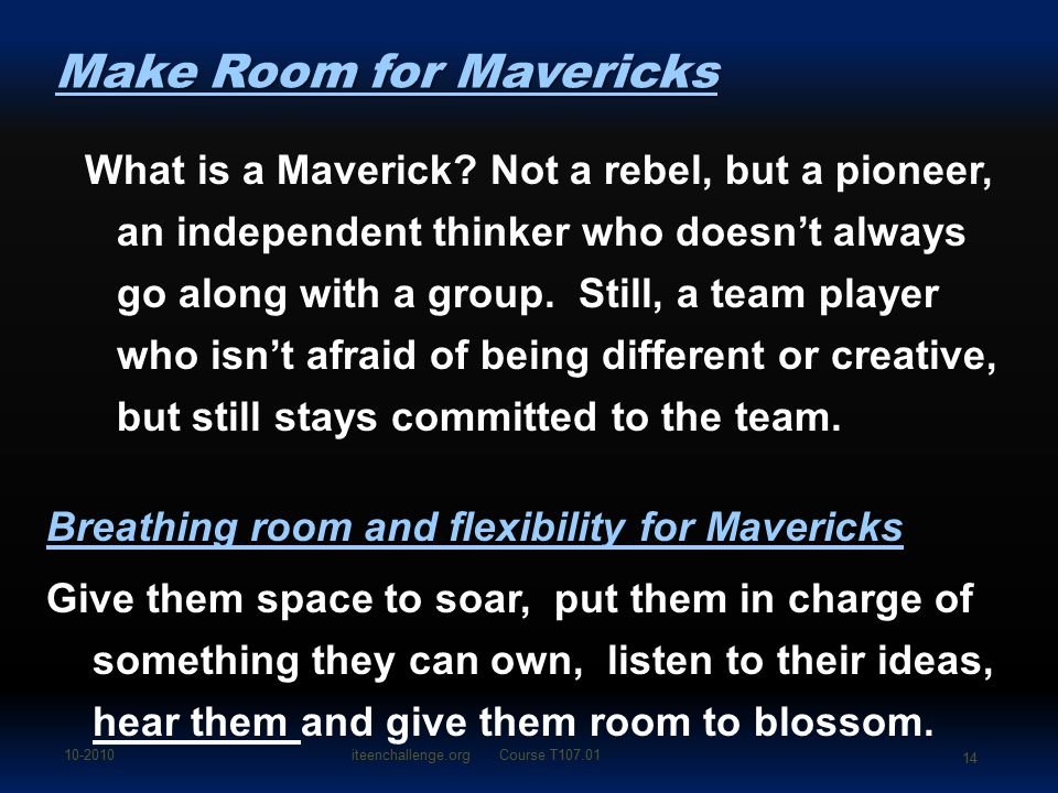 What is a Maverick.