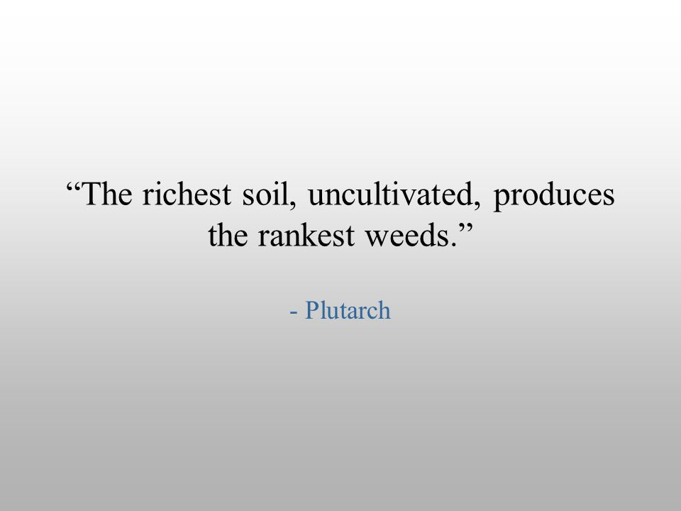 """The richest soil, uncultivated, produces the rankest weeds."" - Plutarch"