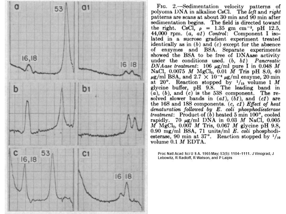 Proc Natl Acad Sci U S A. 1965 May; 53(5): 1104–1111.