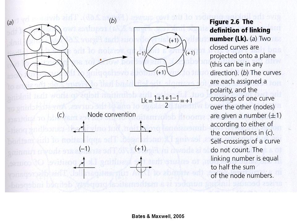 Bates & Maxwell, 2005