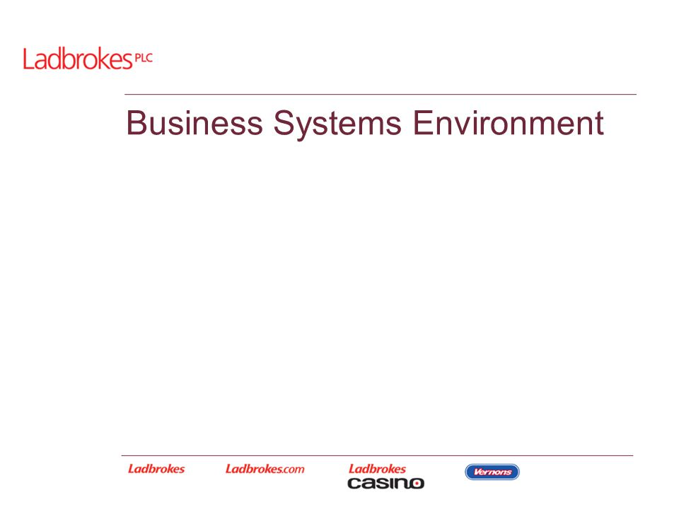 Business Systems Environment